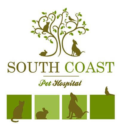 South Coast Pet Hospital